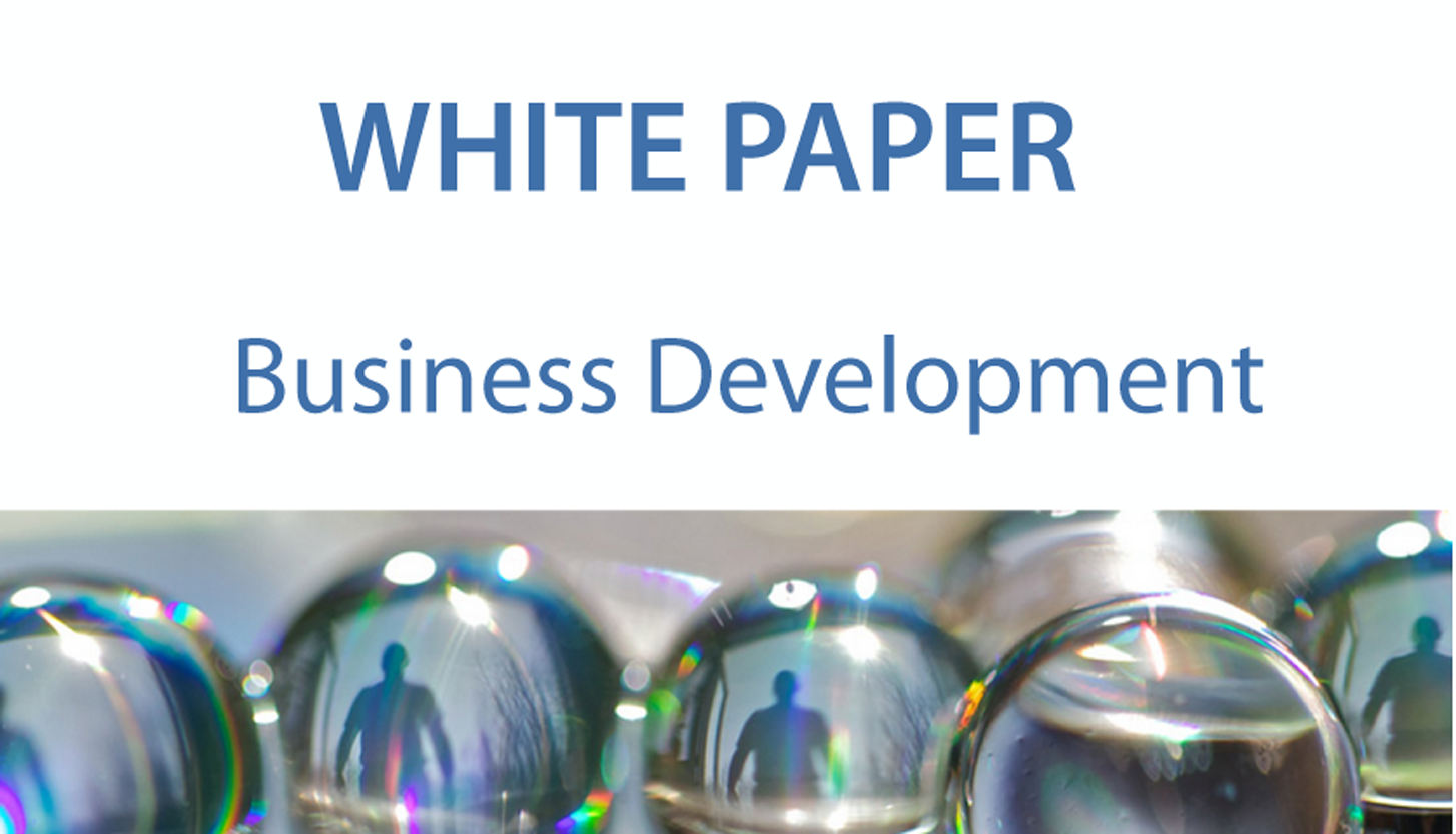 White paper Business Development